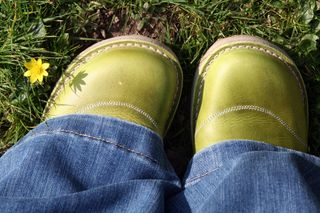Shoes-grass