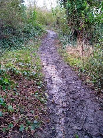 Muddypath