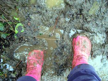 Muddywellies